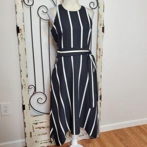 NWT Banana Republic striped dress size 6